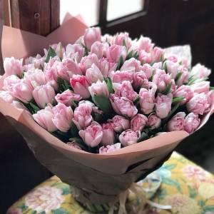 Шикарный букет из 101 розового тюльпана R164
