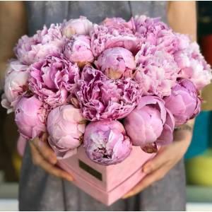 Коробка цветов в виде сердца, 31 розовый пион R770