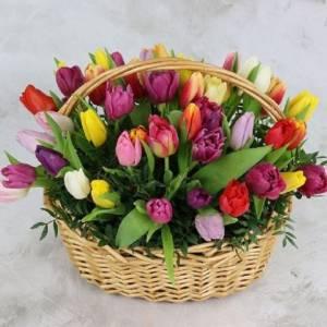 Корзина 45 разноцветных тюльпанов R991