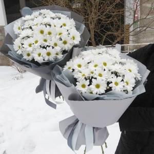 Букет 9 веток белой хризантемы R184