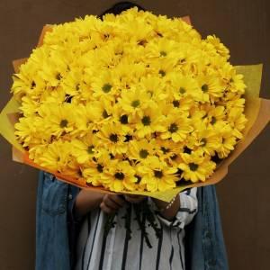 Букет 21 ветка желтой хризантемы в крафте R688